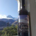 OjosNegros_Wine